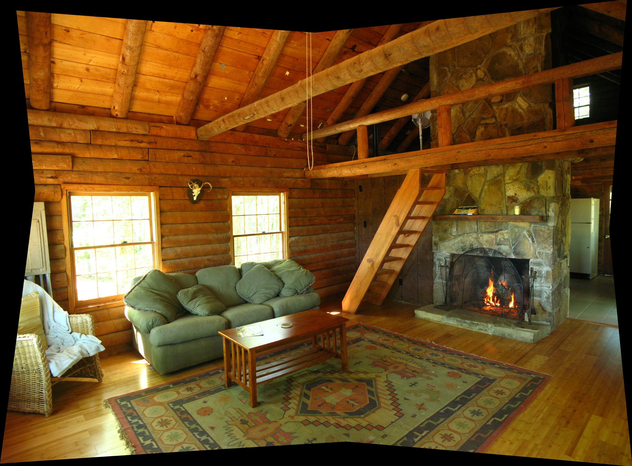 Log Cabin Living Room Home Design Ideas