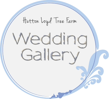 Browse Hutton Loyd Tree Farm Wedding Gallery