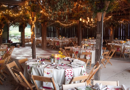 Hutton Lloyd Tree Farm Wedding Events