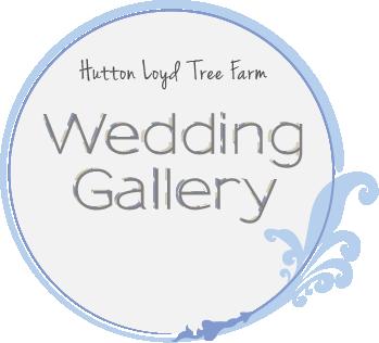 Browse Hutton Loyd Tree Farm Wedding Gallery
