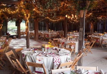 Hutton Lloyd Tree Farm Wedding Events